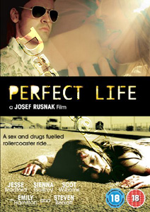 Perfect Life (DVD)