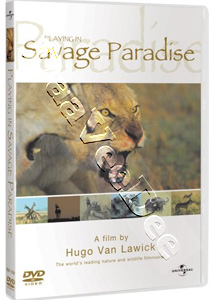 Playing In Savage Paradise (2000) (DVD)